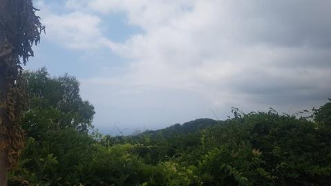 Продается участок, г. Сочи, Дорога на Большой Ахун - Фото 1