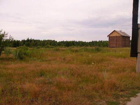 10 соток ЛПХ в д.Томаково, Клепиковского района. - Фото 2