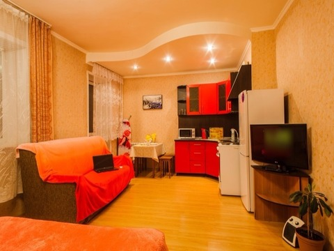 Однокомнатная квартира Советский проспект - Фото 3