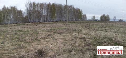 Участок 15 соток в Шимаковке - Фото 2