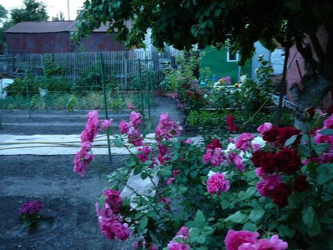 Дом на ул.Шелковичная (пересечение с ул.Емлютина) - Фото 2