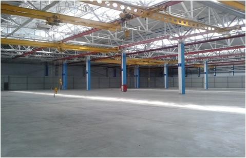 Сдам производственный комплекс 142 300 кв.м. - Фото 4