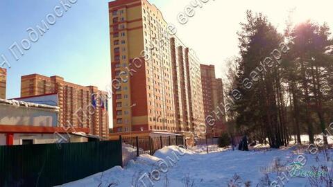 Московская область, Богородский городской округ, деревня Щемилово, . - Фото 5
