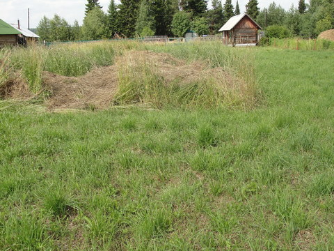 Деревня Визябож. Дачная 15 - Фото 1