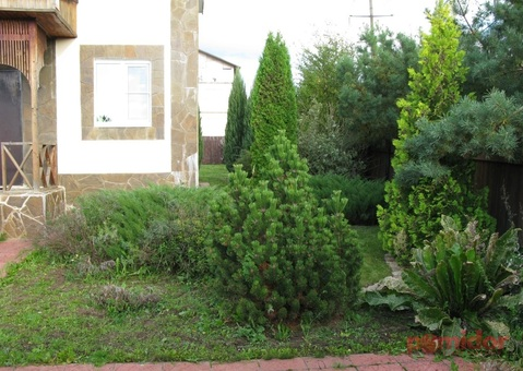 Загородный дом со всеми коммуникациями в Солнечногорске - Фото 4