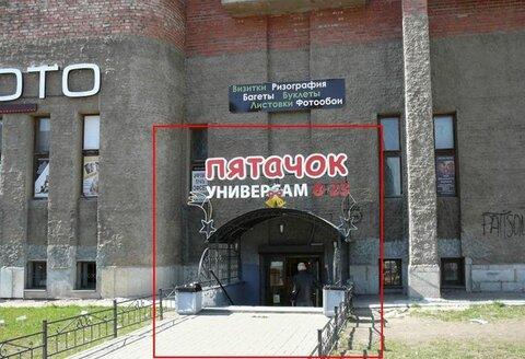 Торговое помещение 267,8 кв.м. Гражданский пр, д. 118 - Фото 1
