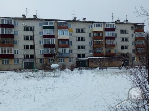 Продается 1-комнатная квартира, с. Березовая роща, ул. Центральная - Фото 1