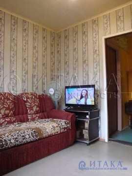 Аренда комнаты, м. Улица Дыбенко, Ул. Подвойского - Фото 3