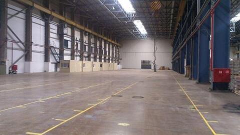 Сдам производственное помещение 12000 кв.м, м. Ладожская - Фото 2