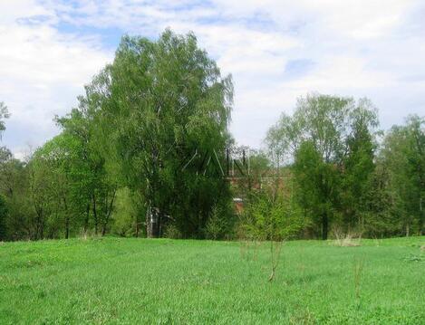 Продается участок, Ленинградское шоссе, 80 км от МКАД - Фото 1