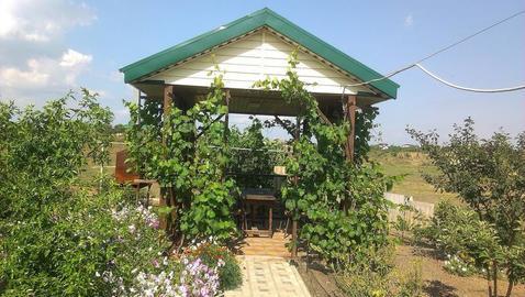 Продажа готового бизнеса, Тамань, Темрюкский район - Фото 4