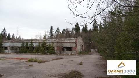 Склад 2423 м.кв. с участком земли 1,44 Га - Фото 3