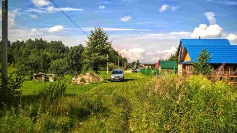 Участок 25 соток в пригороде Пскова, по границе сосновый лес - Фото 5
