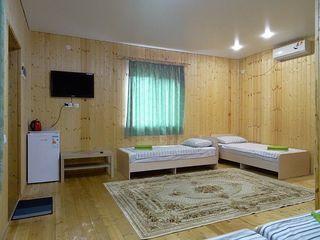 Аренда комнаты посуточно, Сочи, Ул. Хвойная - Фото 1