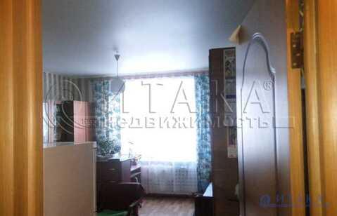 Продажа комнаты, м. Петроградская, Каменноостровский пр-кт. - Фото 5