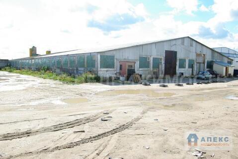 Аренда помещения пл. 1600 м2 под производство, склад Солнечногорск . - Фото 2