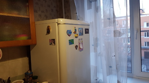 Сдам однокомнатную квартиру в Павловске - Фото 4