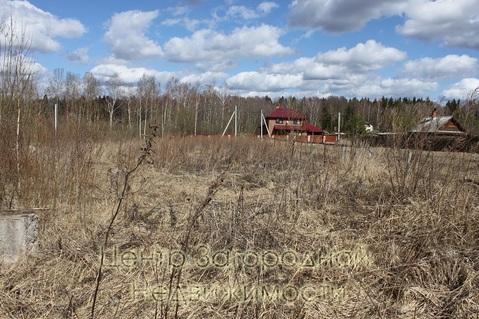 Участок, Новорижское ш, Минское ш, Можайское ш, 110 км от МКАД, . - Фото 2