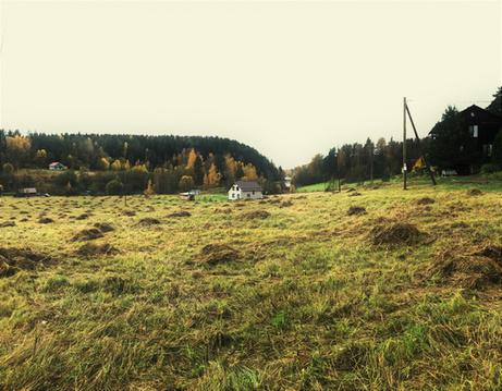 Участок в юго-западном направлении Карелии - Фото 4