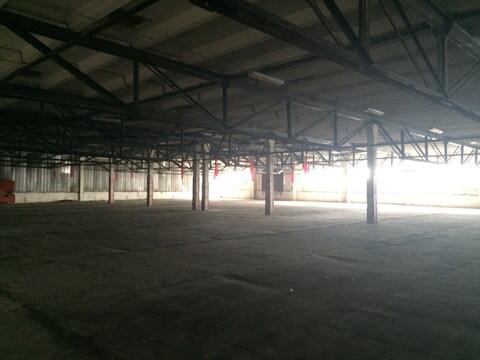 Сдается склад в д. Загорново. Площадь 3250м2 - Фото 2