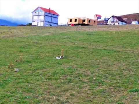 Продам участок 25 сот. г. Алушта с. Лучистое 6 км от моря - Фото 1