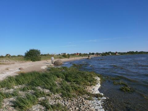 Участок 26 соток ,500 м.от Чудского озера - Фото 1