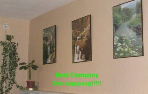 Продается 3-х комнатная квартира с панорамным видом на лес! - Фото 3