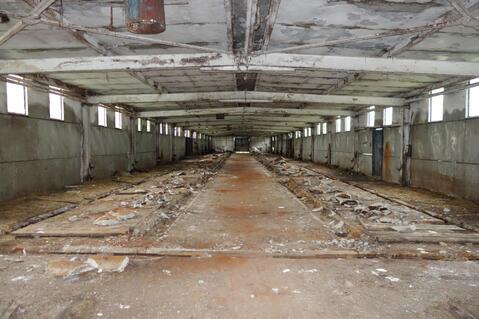Производственно-складской комплекс 4000 кв.м. - Фото 3