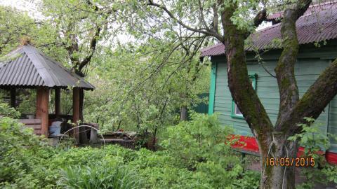 Земельный участок 8 с в Центре Мытищи - Фото 1