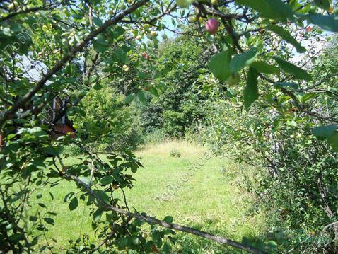 Можайское ш. 31 км от МКАД, Голицыно, Коттедж 150 кв. м - Фото 5