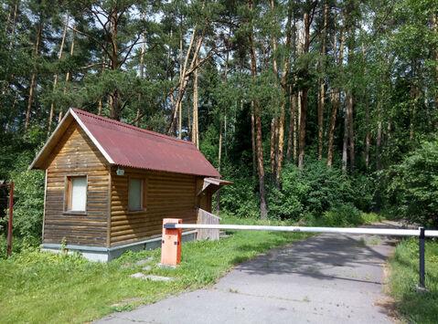 Д. Маслово нп «Блинчиково» участок 24.19 соток ИЖС красивейшего леса. - Фото 4