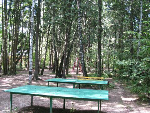 Рублево-Успенское ш. 20км. ран Ново-Дарьино лесной участок 76 соток. - Фото 2