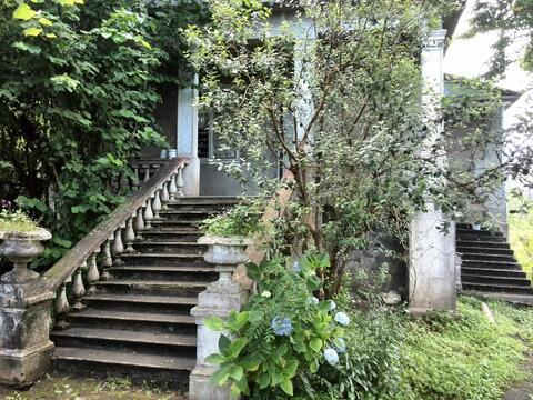 Сдается частный дом, Дома и коттеджи на сутки Батуми, Грузия, ID объекта - 501749054 - Фото 1
