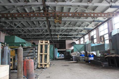 Сдам производственный комплекс 11 158 кв.м. - Фото 3
