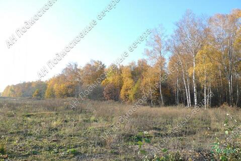Киевское ш. 84 км от МКАД, Кабицыно, Участок 30 сот. - Фото 1