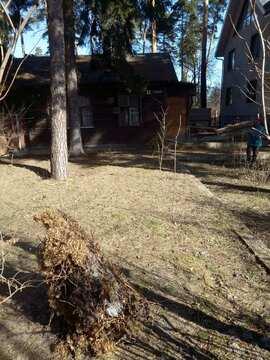 В черте г.Пушкино продается земельный участок - Фото 4