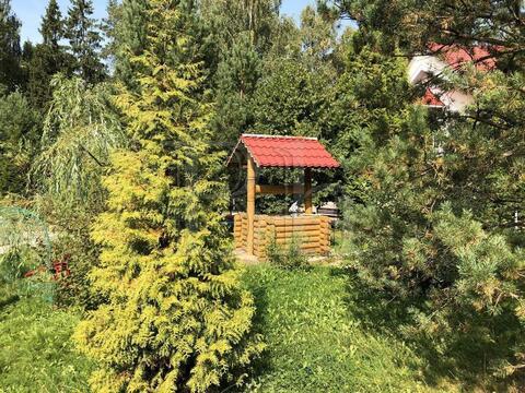 Уютный классический дом на сказочном участке, граничащем с лесом и . - Фото 5