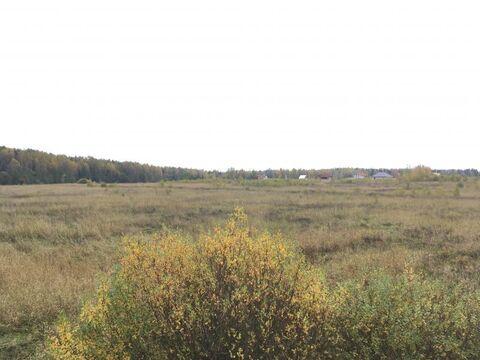Большое коновалово гектар - Фото 5