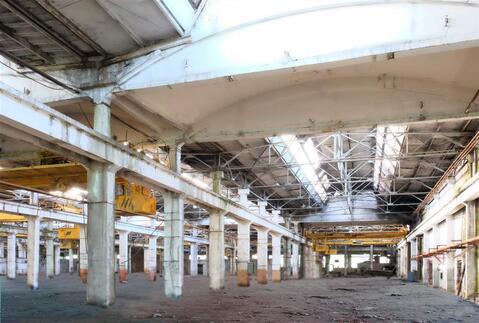 Производственно-складское здание 20 000 кв.м. - Фото 1