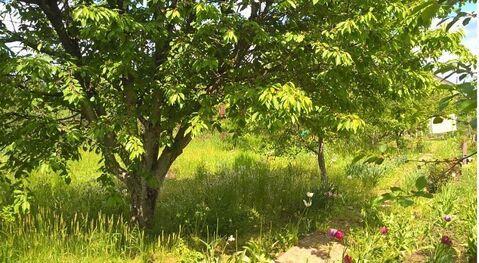 Продается земельный участок Респ Адыгея, Тахтамукайский р-н, пгт Энем, . - Фото 2