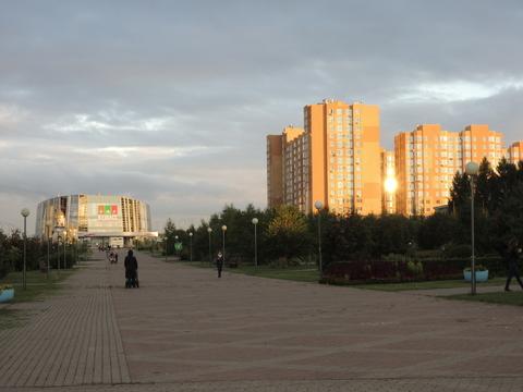 Сдам коммерческое помещение в Ленинском районе - Фото 2