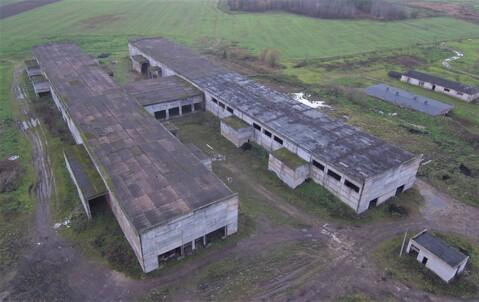 Производственный комплекс оп-12000 кв.м. h-11м. - Фото 3