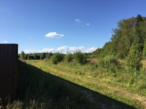 Участок 15 соток, д. Новинки 47 км. от МКАД по Дмитровскому шоссе. - Фото 5