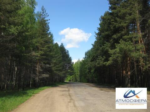 Продается земельный участок 1 га Красный Профинтерн - Фото 2