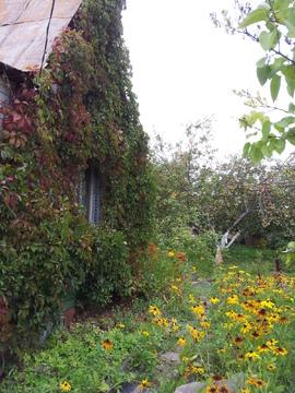 14 соток в д. Сонино с домом, свет, скважина. ЛПХ - Фото 4