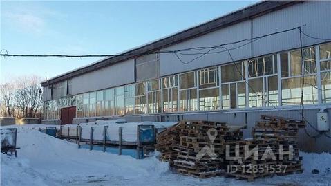Склад в Тюменская область, Тюмень ул. Еловая, 3 (9259.0 м) - Фото 1