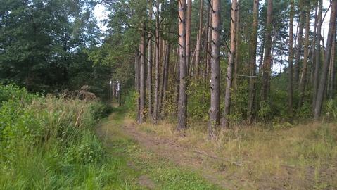 Земельный участок 10 соток д.Игуменка Тверская область - Фото 3