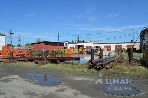 Производственное помещение в Тюменская область, Тюмень ул. Тимофея . - Фото 1