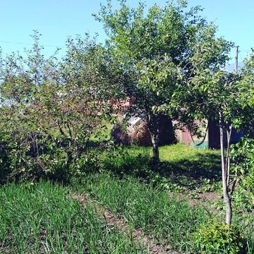 Продаю земельный участок в Шербаши Моргаушского района - Фото 2