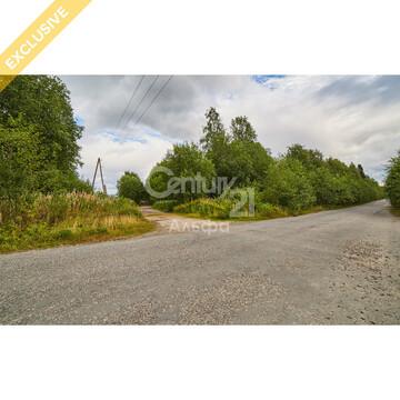 Продажа земельного участка 22 сот в д. Пелдожа - Фото 4